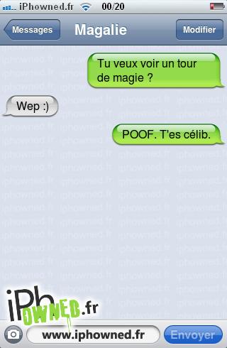Tu veux voir un tour de magie ?, Wep :), POOF. T'es célib.,